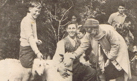Teahouse Of The August Moon Goat Competition 1960